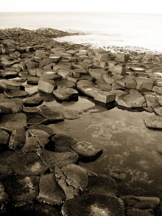 photoblog image Gaint's Causeway Northern Ireland
